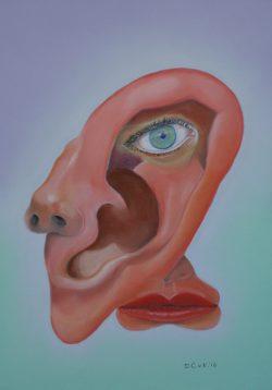 Het multifunctionele oor